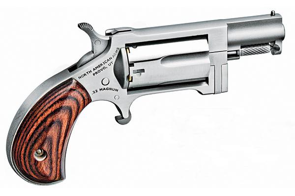 North American Arms Sidewinder