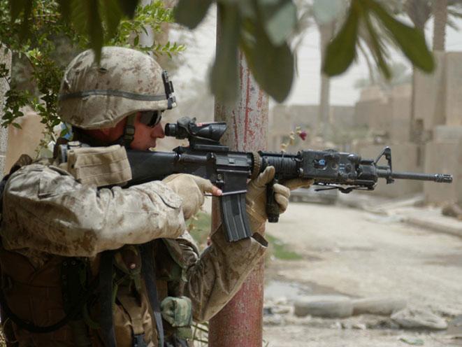 veterans, veterans day, united states veterans day, united states veteran, military veteran, veteran's day