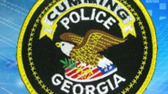 Georgia Firearms Safety Training Class, georgia firearms, georgia guns