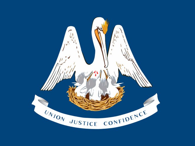 concealed carry, concealed carry handgun, concealed carry guns, concealed carry laws, concealed carry state law