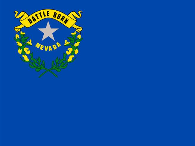 Nevada Background Check, nevada gun control, nevada gun laws