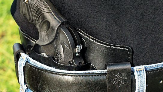 holster, holsters, concealed carry