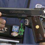 colt, rail gun, colt rail gun, colt commander, colt rail gun series, lightweight commander, combat commander