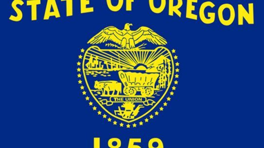 Oregon Gun Background Check, gun background check, background check