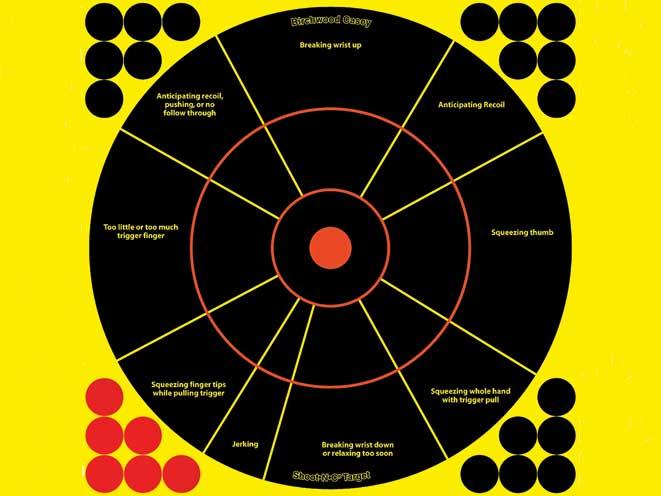 targets, target, rimfire target, rimfire targets, Birchwood Casey shoot n-c handgun trainer