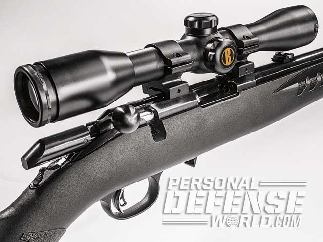 Ruger American Rimfire, Ruger American Rimfire rifle, american rimfire rifle, american rimfire rifle, ruger american rimfire bolt 2
