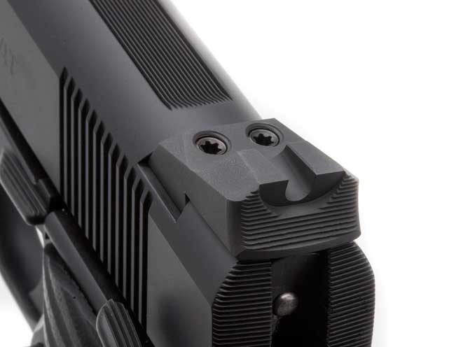 wilson combat, wilson combat protector, wilson combat protector professional, wilson combat 2015 protector, wilson combat protector compact, wilson compact protector full-size