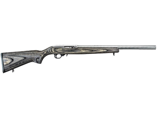 rimfire, rimfire rifle, rimfire rifles, classic rimfire rifles, ruger 10/22 target