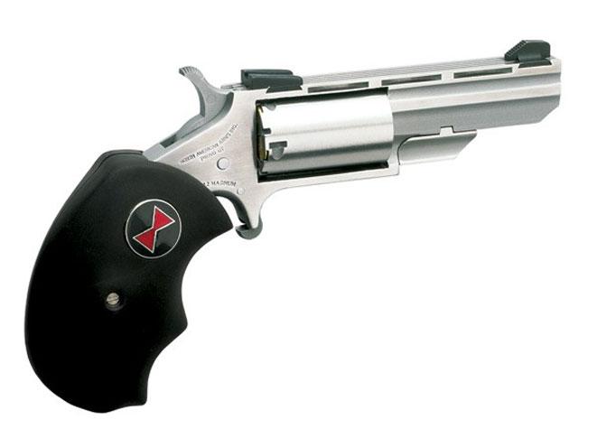 north american arms, north american arms mini revolver, north american arms mini revolvers, mini revolver, mini revolvers, NAA black widow sights