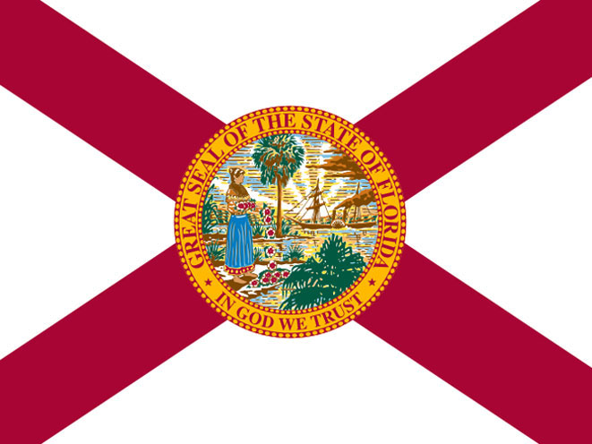 concealed carry, concealed carry gun law, concealed carry gun laws, concealed carry gun, concealed carry guns, concealed carry law, concealed carry laws, florida concealed carry