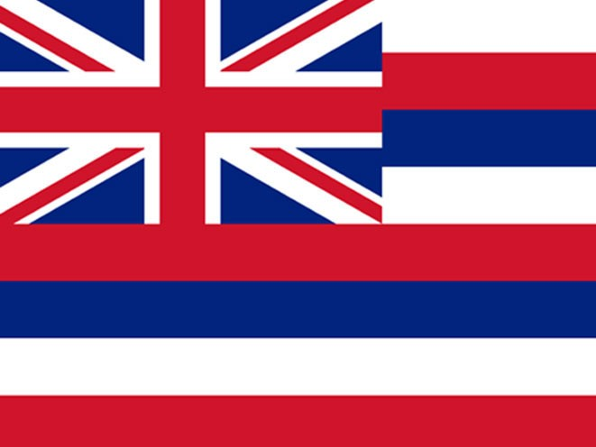 concealed carry, concealed carry gun law, concealed carry gun laws, concealed carry gun, concealed carry guns, concealed carry law, concealed carry laws, hawaii concealed carry