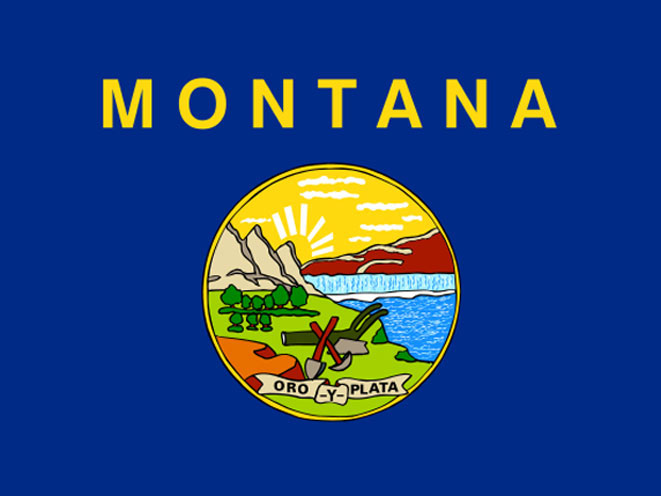 concealed carry, concealed carry gun law, concealed carry gun laws, concealed carry gun, concealed carry guns, concealed carry law, concealed carry laws, montana concealed carry