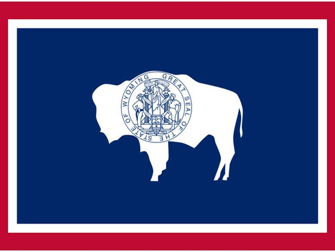 concealed carry, concealed carry gun law, concealed carry gun laws, concealed carry gun, concealed carry guns, concealed carry law, concealed carry laws, wyoming concealed carry