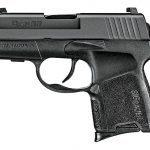 pocket pistol, pocket pistols, concealed carry, concealed carry guns, concealed carry gun, concealed carry pistol, concealed carry pistols, pocket gun, pocket handgun, pocket handguns, Sig Sauer P290RS