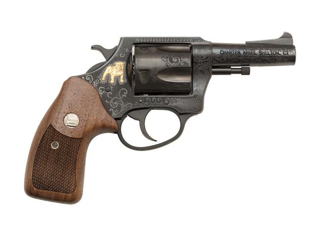 charter arms, charter arms bulldog, 50th anniversary bulldog revolver, bulldog revolver, 50th anniversary bulldog, charter arms bulldog beauty, 50th anniversary bulldog right