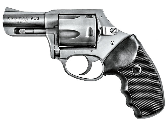 charter arms, charter arms bulldog, charter arms bulldog revolver, Charter Arms Bulldog SS DAO