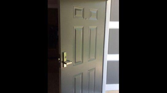 guardian security structures, Residential Bullet Resistant Door
