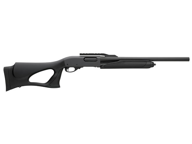 Benelli nova stock options