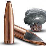 bullet, bullets, ammo, ammunition, Norma Oryx