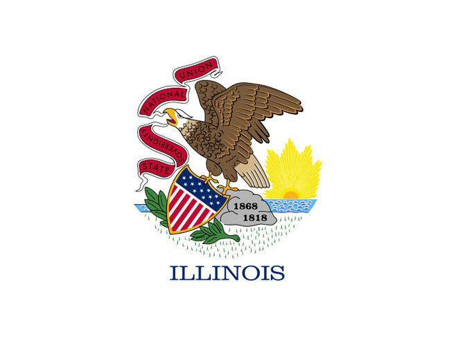 concealed carry, concealed carry gun, concealed carry gun law, concealed carry gun laws, Illinois concealed carry