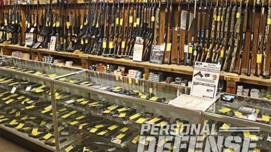 gun background checks, background checks