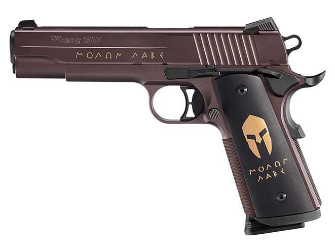 Sig Sauer 1911 SPARTAN pistol