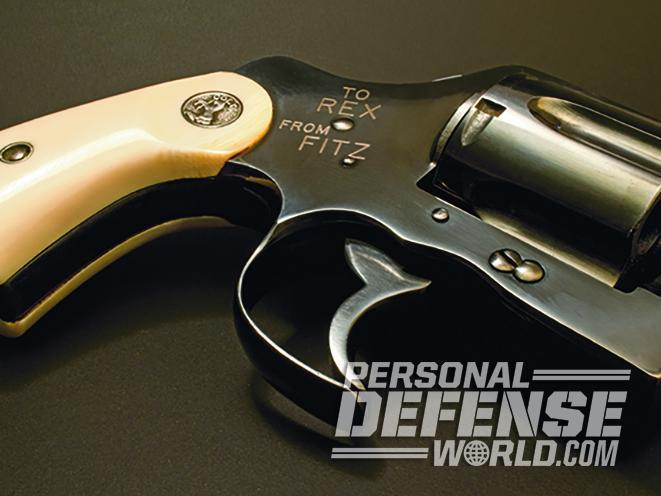fitz special triggerguard