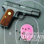 Model 1903 Pocket Hammerless target