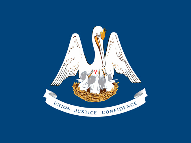 louisiana concealed carry laws