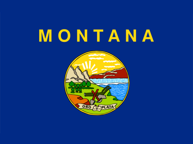 montana concealed carry laws