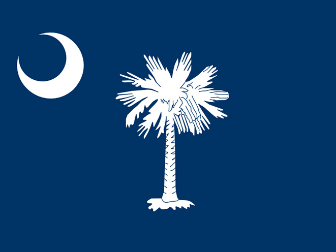 south carolina concealed carry laws