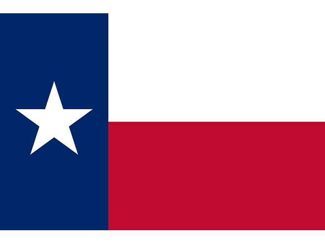 texas concealed carry laws