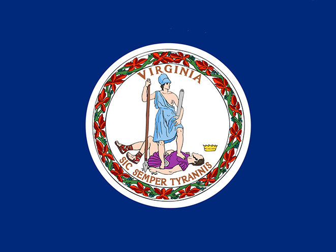 virginia concealed carry laws