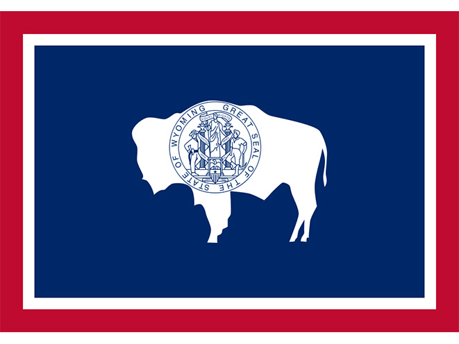wyoming concealed carry laws