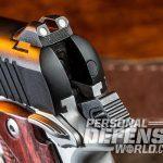 Kimber Micro 9 rear sight