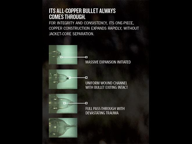 Remington Performance Wheelgun and HTP Copper ammunition