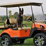 Personal Protection Dog golf cart