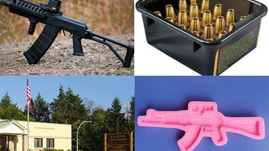 Stupid Gun Laws lead