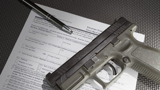 nics gun background checks