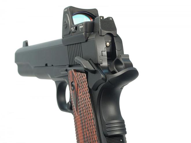 Ed Brown LS10 pistol rear sight