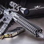 .308 AR rifle
