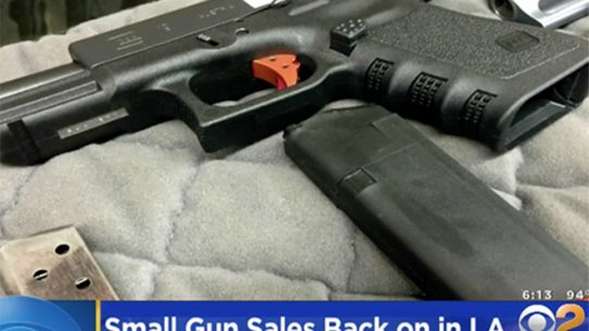 los angeles ultracompact gun ban