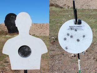 new steel targets 2017