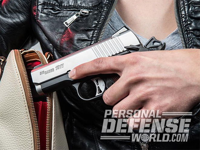 hurricane irma concealed carry