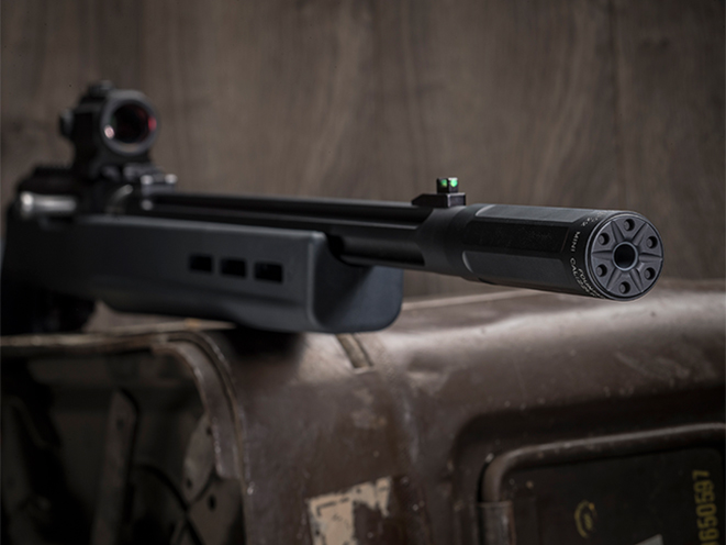 SureFire Ryder 22-Mini suppressor attached
