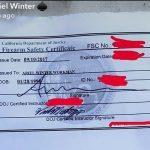 ariel winter firearm safety certificate