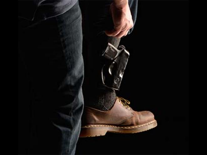 backup gun sig safer