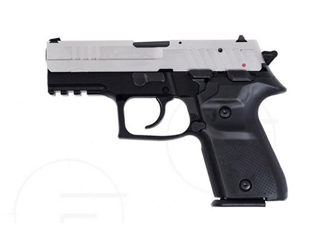 rex pistols nickel plated slide compact left profile