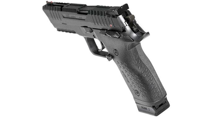 Arex Rex Alpha pistol rear sight