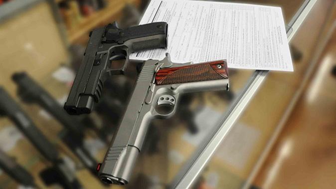 government shutdown nics guns